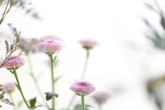 WMP_FlowerCrownWorkshop_10
