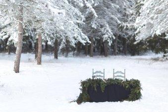 wmp_winterstyledtable_2